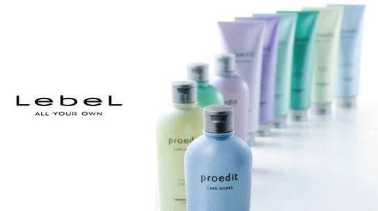 Lebel Proedit Home Charge
